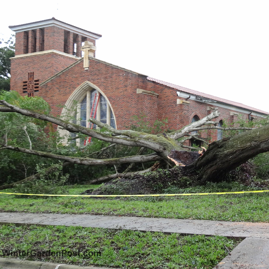 hurricane matthew knocks down tree at first united methodist church