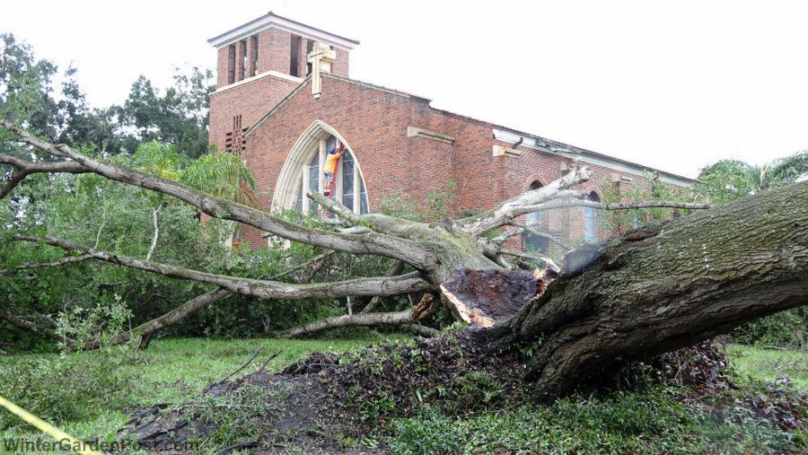 Hurricane matthew knocks down tree at first united methodist church for Weather winter garden fl 34787